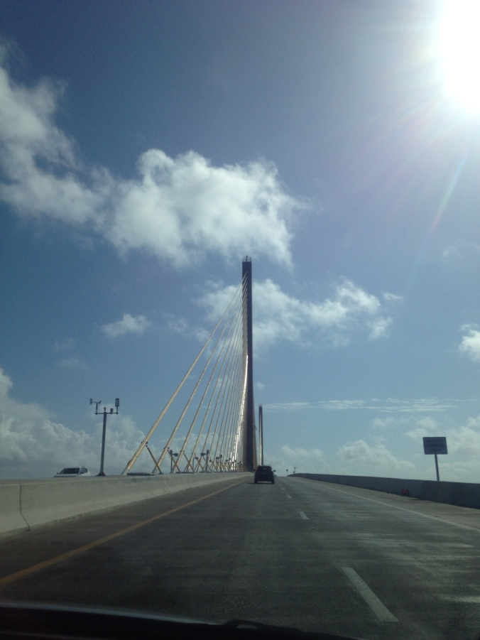 Sunshine Skyway Bridge, Tampa Bay, FL by Liz